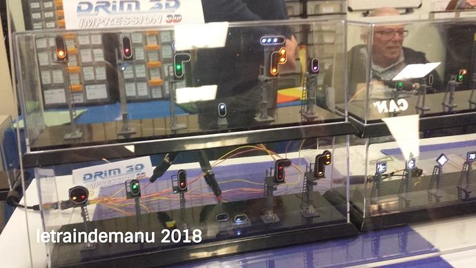 letraindemanu (464b) Gamme Drim 3D exposition Saint-Mandé 2018.jpg