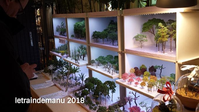 letraindemanu (452b) Arboris miniature exposition de Saint Mandé 2018.jpg