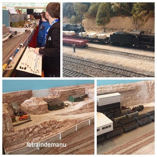 letraindemanu (684b) Exposition Chelles le rail dans tous ses états 007 module Euro-Trak.jpg